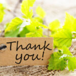 Thank you from Ives Advantage Insurance